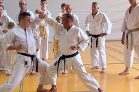 Karate Sommercamp 2018 in Neuhofen